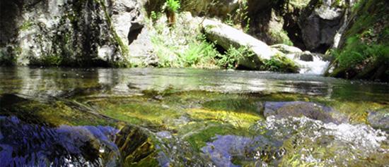 Canyoning au Canigou